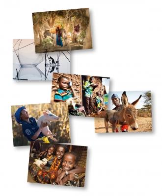 """Grußkarten-Set """"Leben mit Tieren"""""""